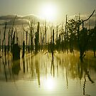 Sunrise over Manasquan Reservoir III by Debra Fedchin