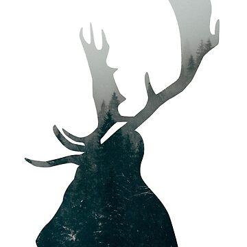 Deer by annarr