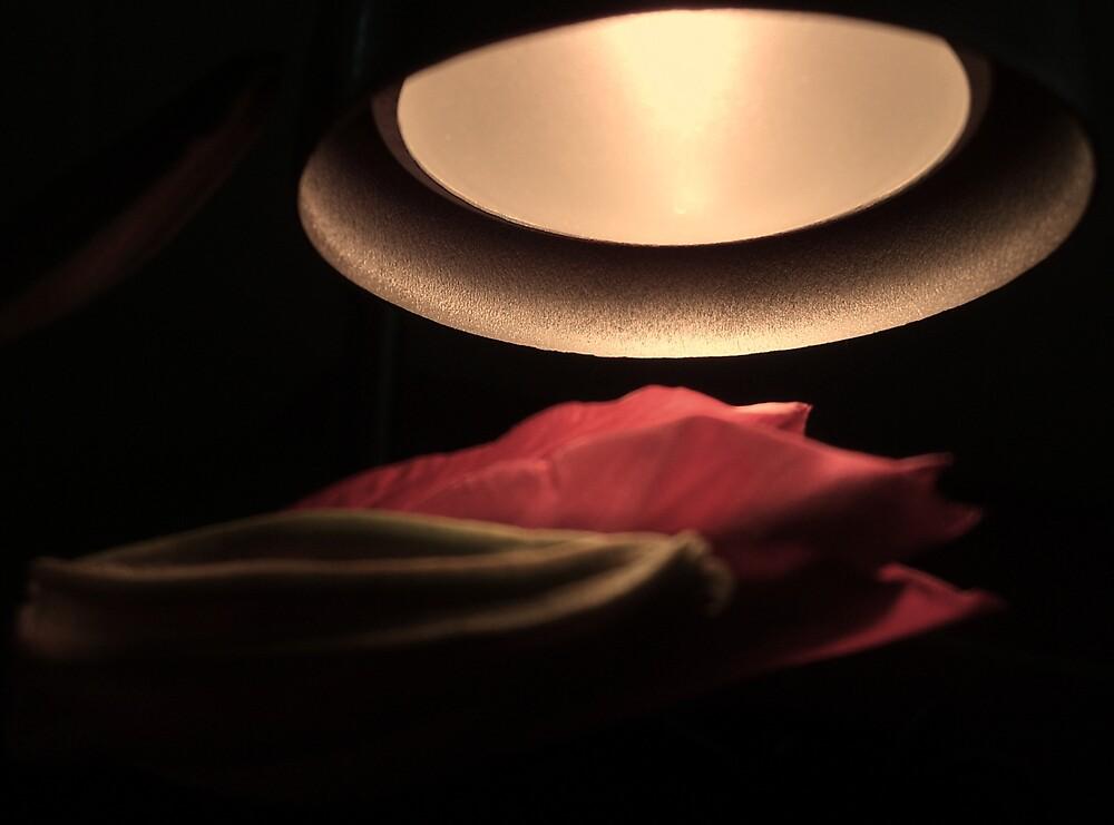 red.flower.light by grcc