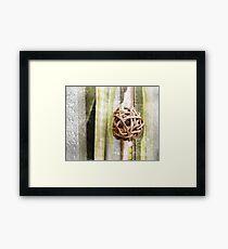 Wooden decoration  Framed Print