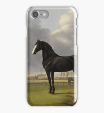 Anthony Oberman - Adriaan Van Der Hoop s Trotter de Vlugge  In A Meadow, 1828 iPhone Case/Skin