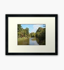 Greenery and water Framed Print