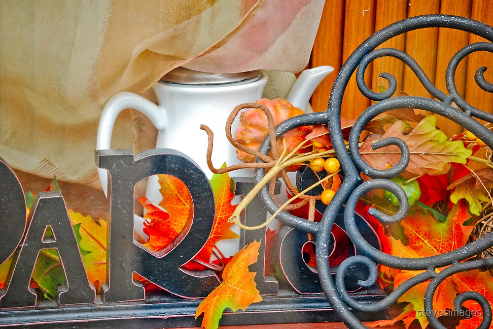 shop window by stevesimages