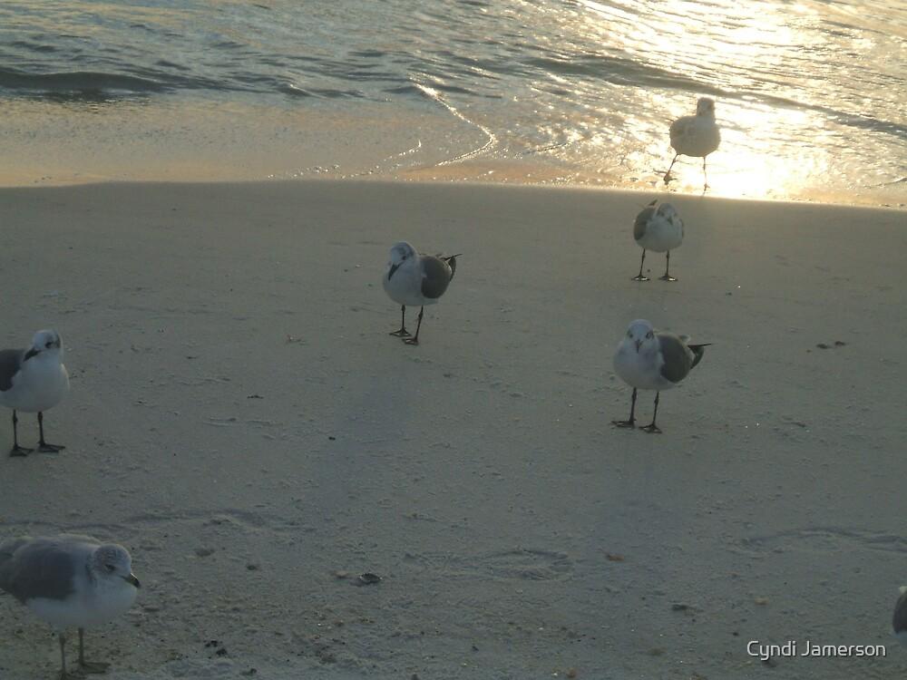 Seashore by Cyndi Jamerson