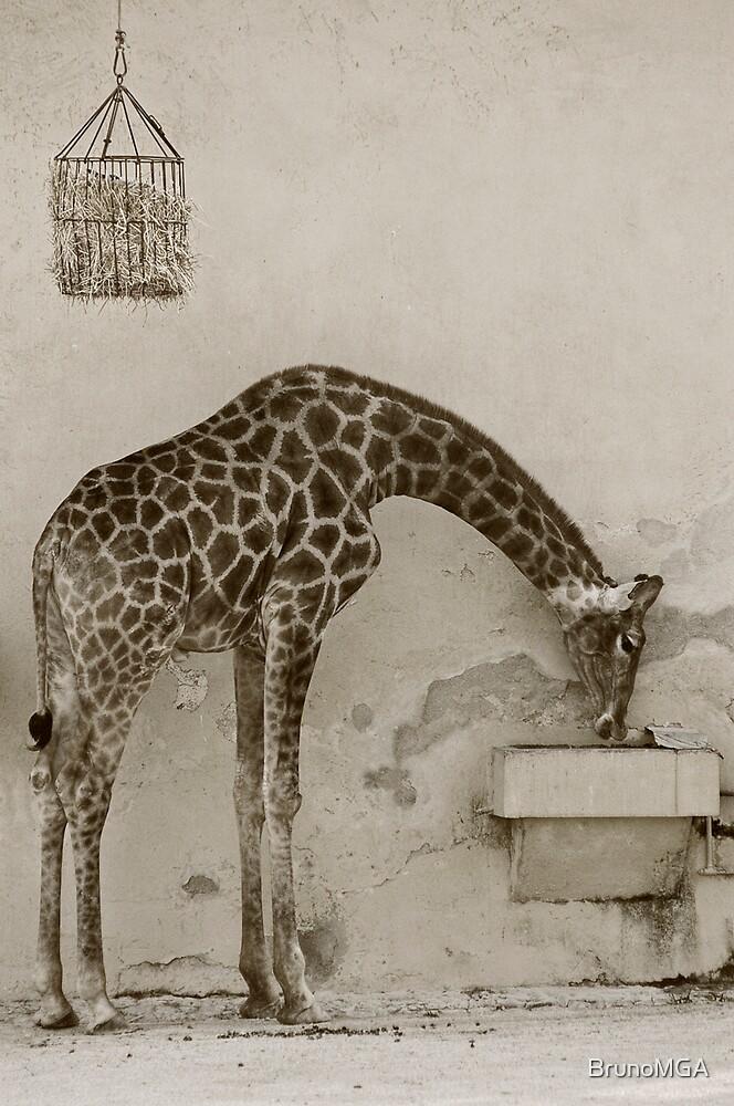 Captivity part III by BrunoMGA