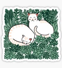 Cats in a succulent garden Sticker
