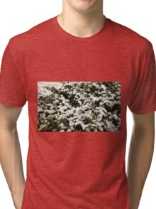 Snow Bush Tri-blend T-Shirt