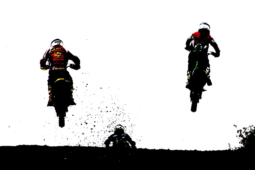 Flying high by David Elliott