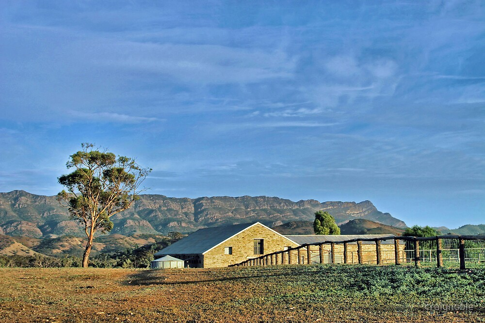 Flinders Ranges Woolshed by craignoble