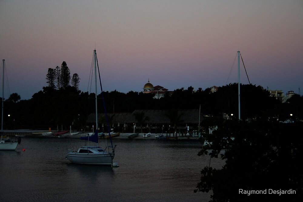 sailboat at dawn by Raymond Desjardin