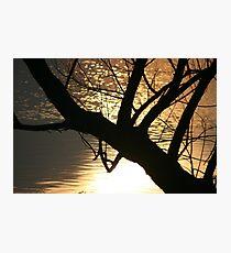 ~SERENITY~ Photographic Print