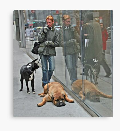 Another Doggone Phone Call Canvas Print