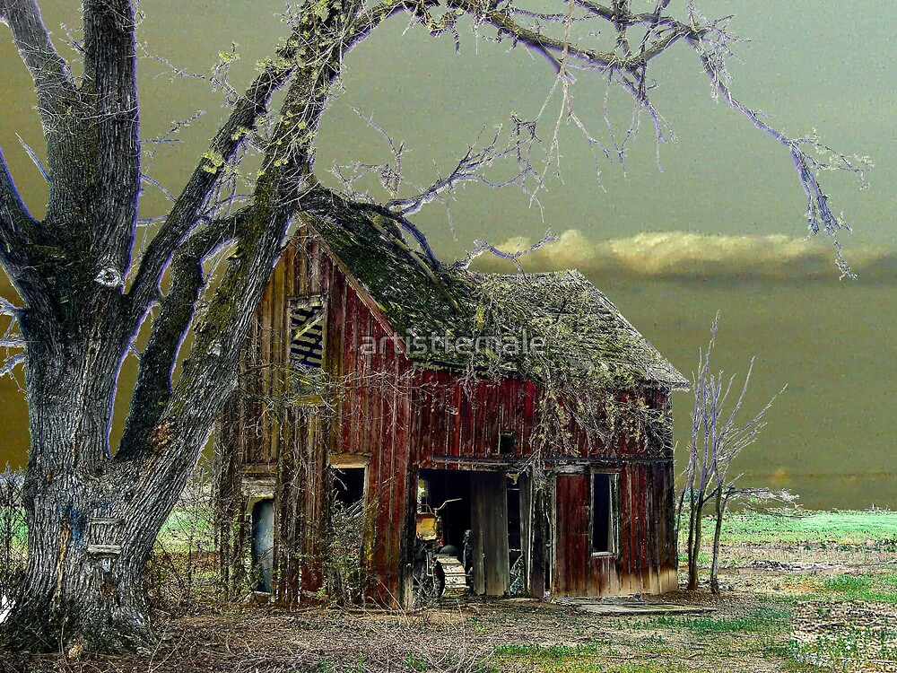 The Barn by artistfemale