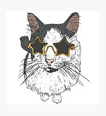 Cat With Star Glasses Photographic Print