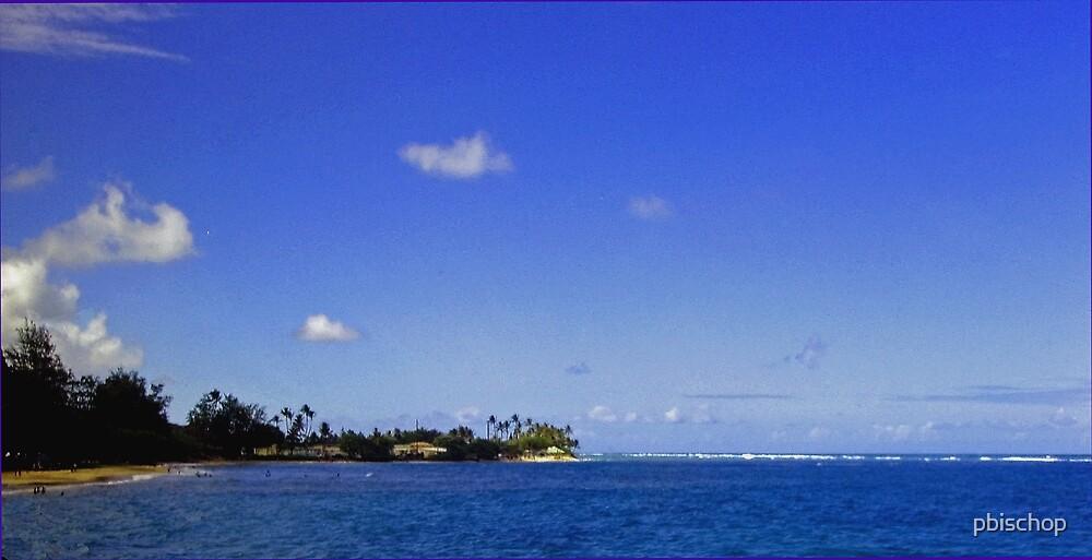 Blue Hawaii by pbischop