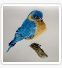 Blue Bird  Sticker