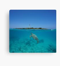 Sea turtle underwater lighthouse island Canvas Print
