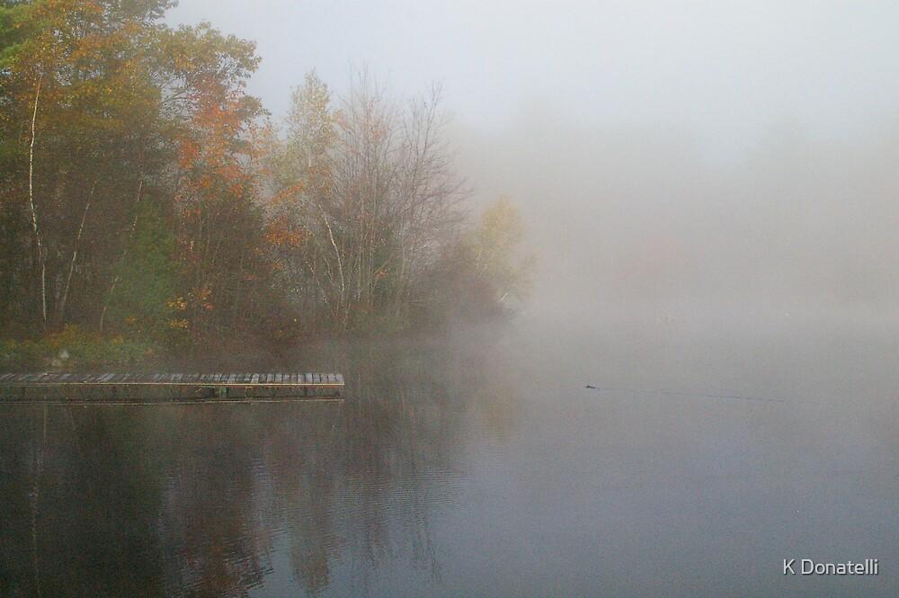 Foggy Morning by K Donatelli