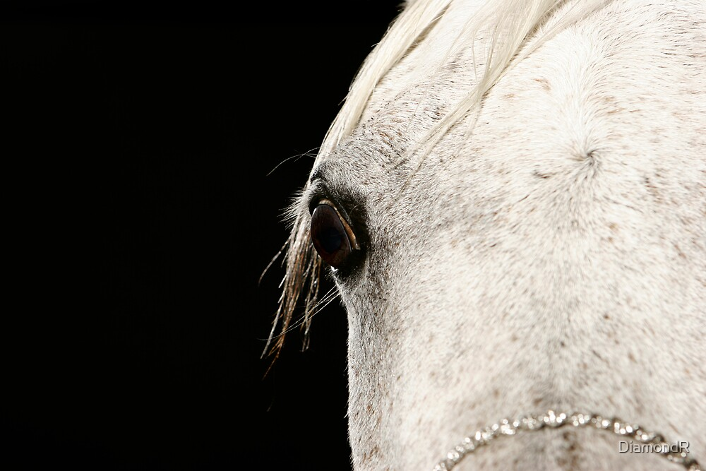 The Eye of Nefisa by DiamondR