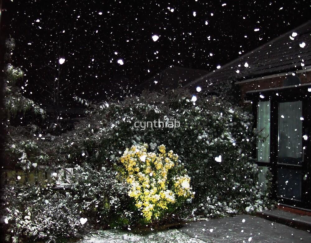 falling snow flake hearts by cynthiab