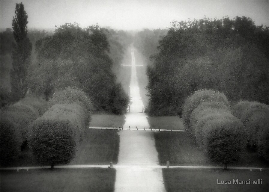Go your way by Luca Mancinelli