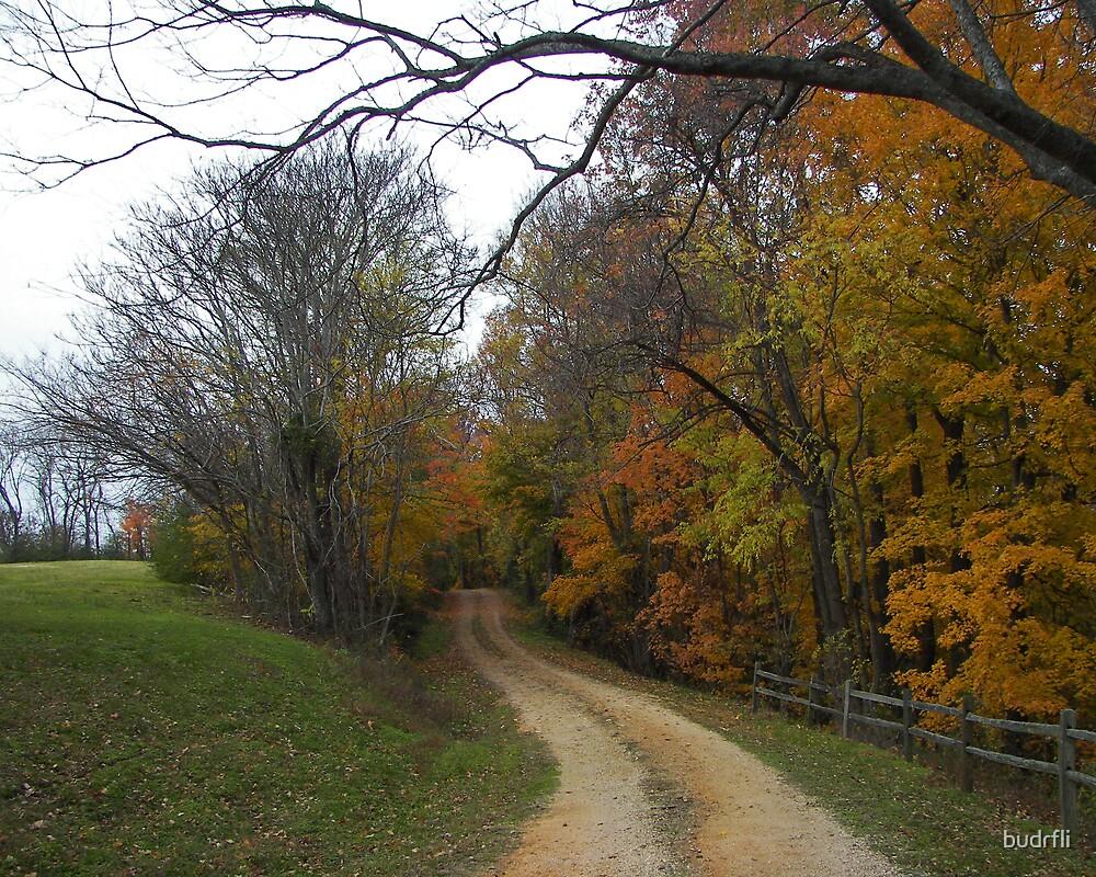 slice of autumn by budrfli