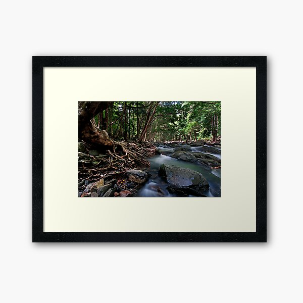 Lord of the Rings River Framed Art Print