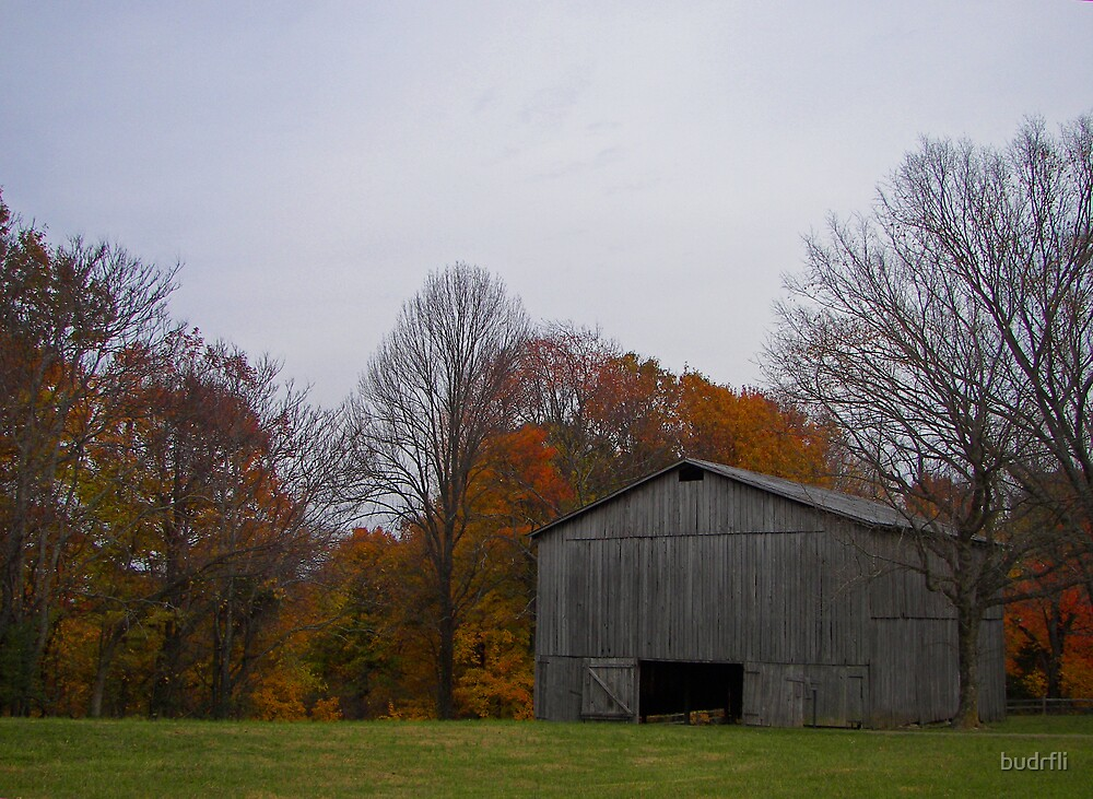 tobacco barn, front by budrfli