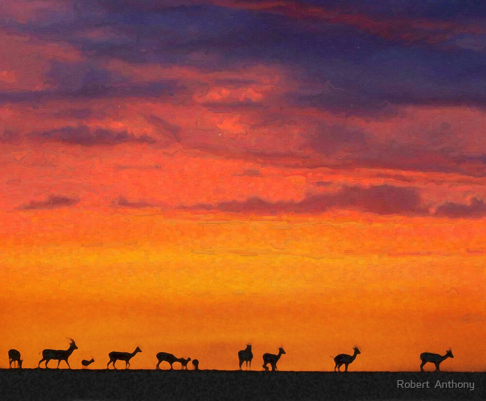 Antelope Crossing by Robert  Anthony