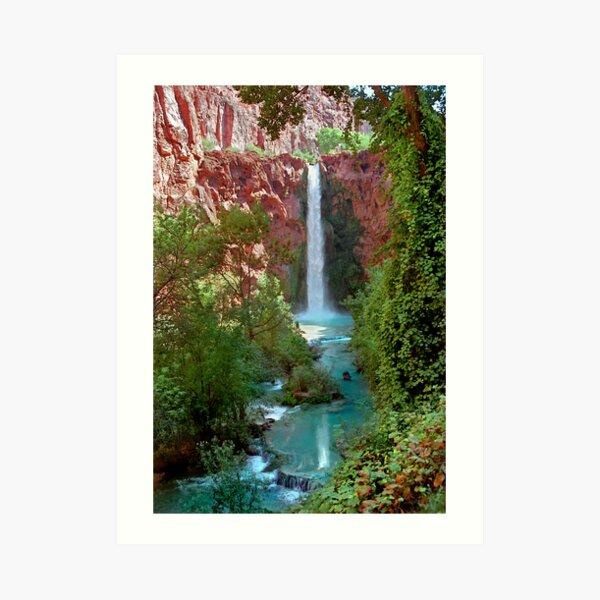 Moony Falls and Tree Art Print