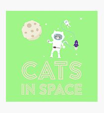 Cats in Space Rtfb7 Photographic Print