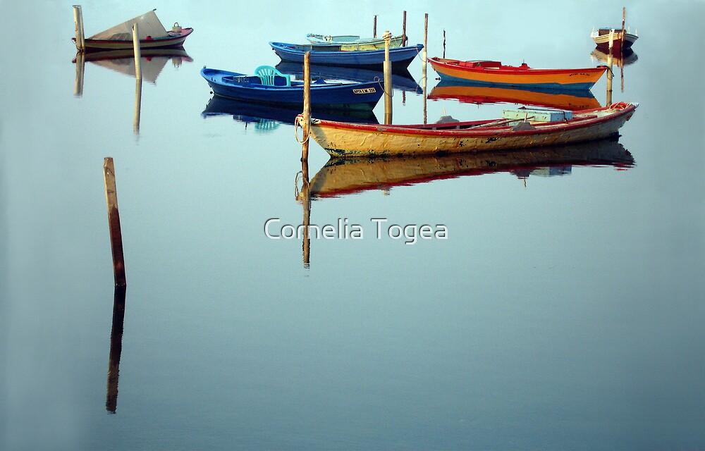 fishing boats in Mesolonghi by Cornelia Togea