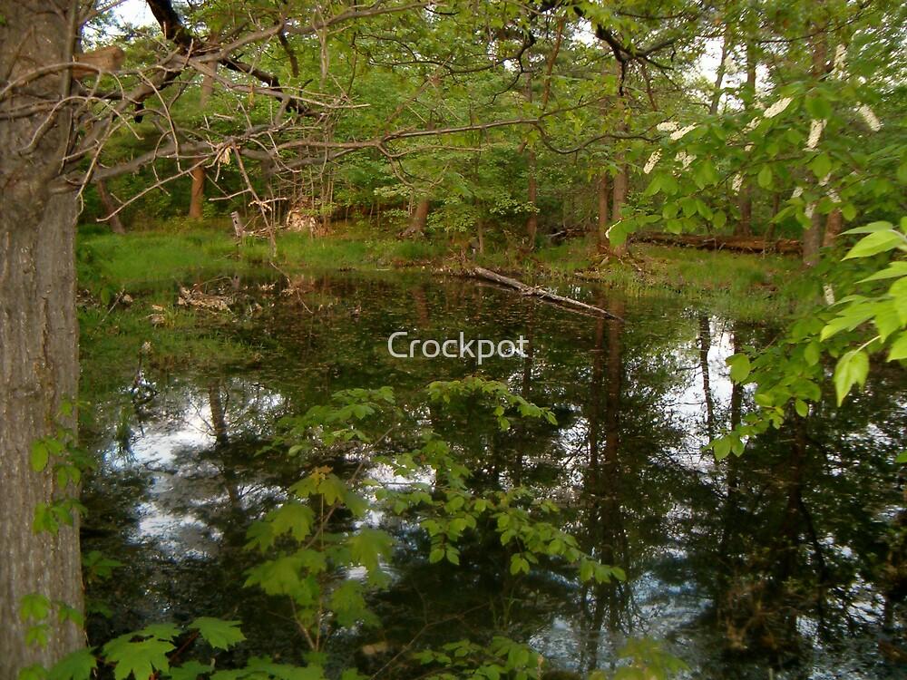 Grave by Crockpot