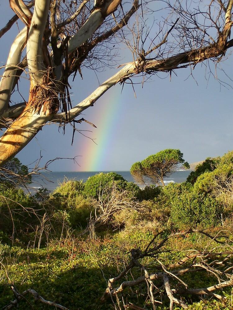 rainbow at Leith, Tasmania by gaylene