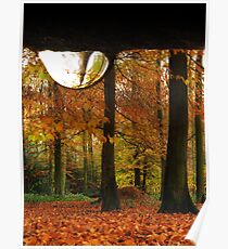 A DROP OF RAIN IN AUTUMN Poster