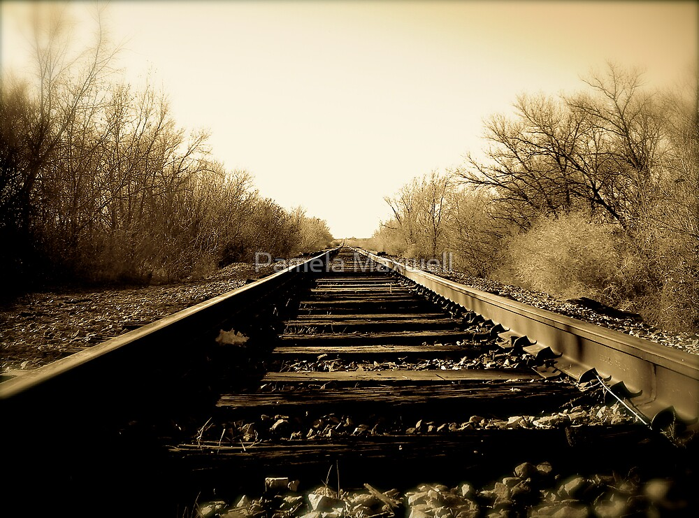 Antique Train Track by Pamela Maxwell