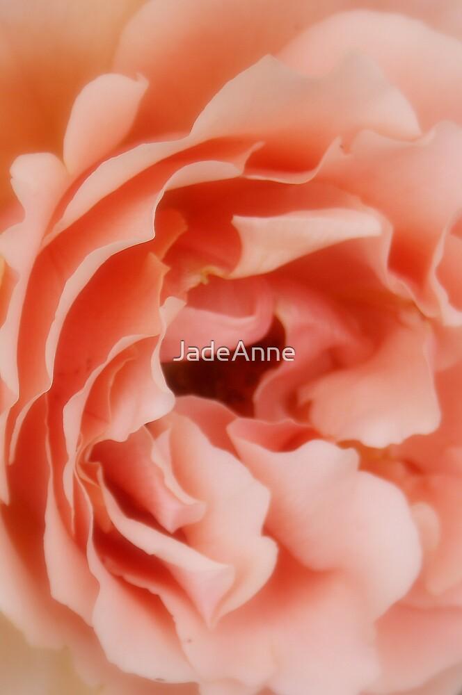 Soft Petals by JadeAnne