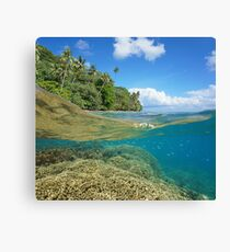 over under sea tropical coast coral reef underwater Canvas Print