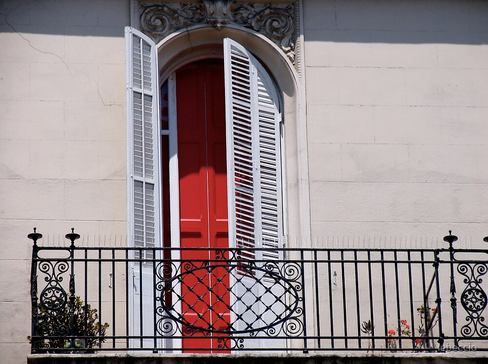 Red Door by lebeccio