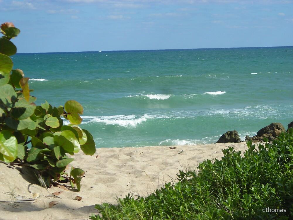 Deerfield Beach, Florida by cthomas