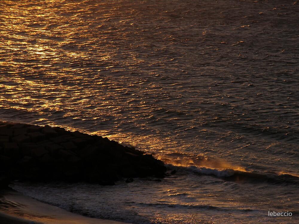 Shore by lebeccio