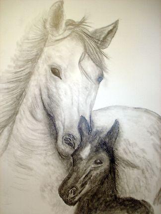 tender loving care  by countryboyintx