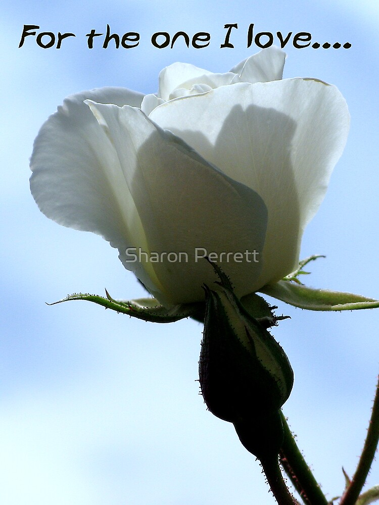 For the one I love - 3 by Sharon Perrett
