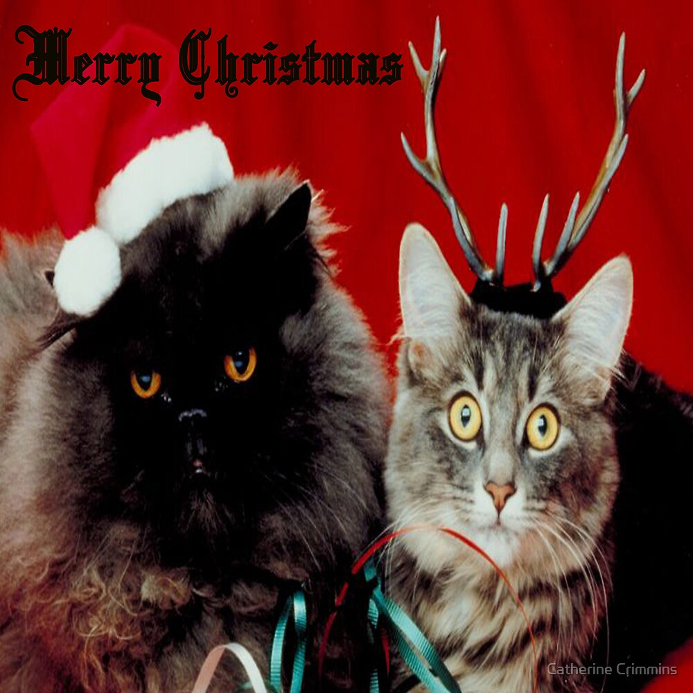 Meowy Christmas by Catherine Crimmins