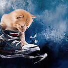 Süßes Kätzchen spielt in Turnschuhen by Gatterwe