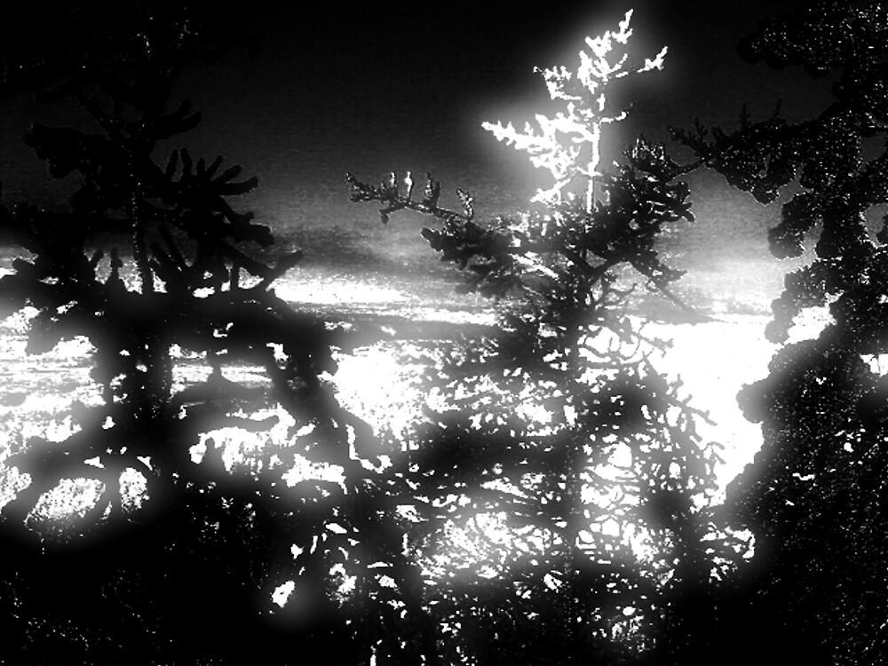 darklight by CheyenneLeslie Hurst