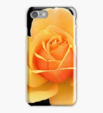 Yellow Rose Flower in Black Background iPhone Case/Skin