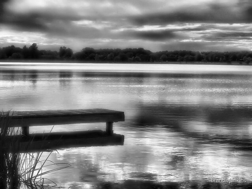 Dock by brandiejenkins