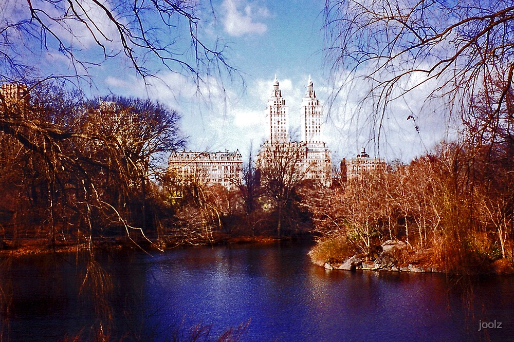 Central Park by joolz