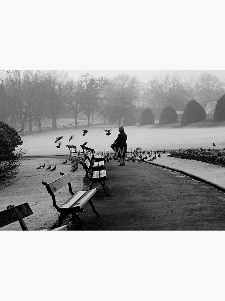 Shy woman feeding pigeons by DuncanW